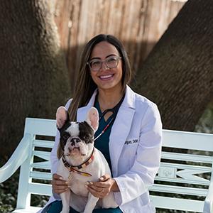 Dr. Dalied Rodriguez